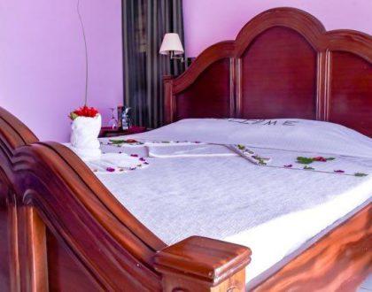 Executive Single(Bed & Breakfast)